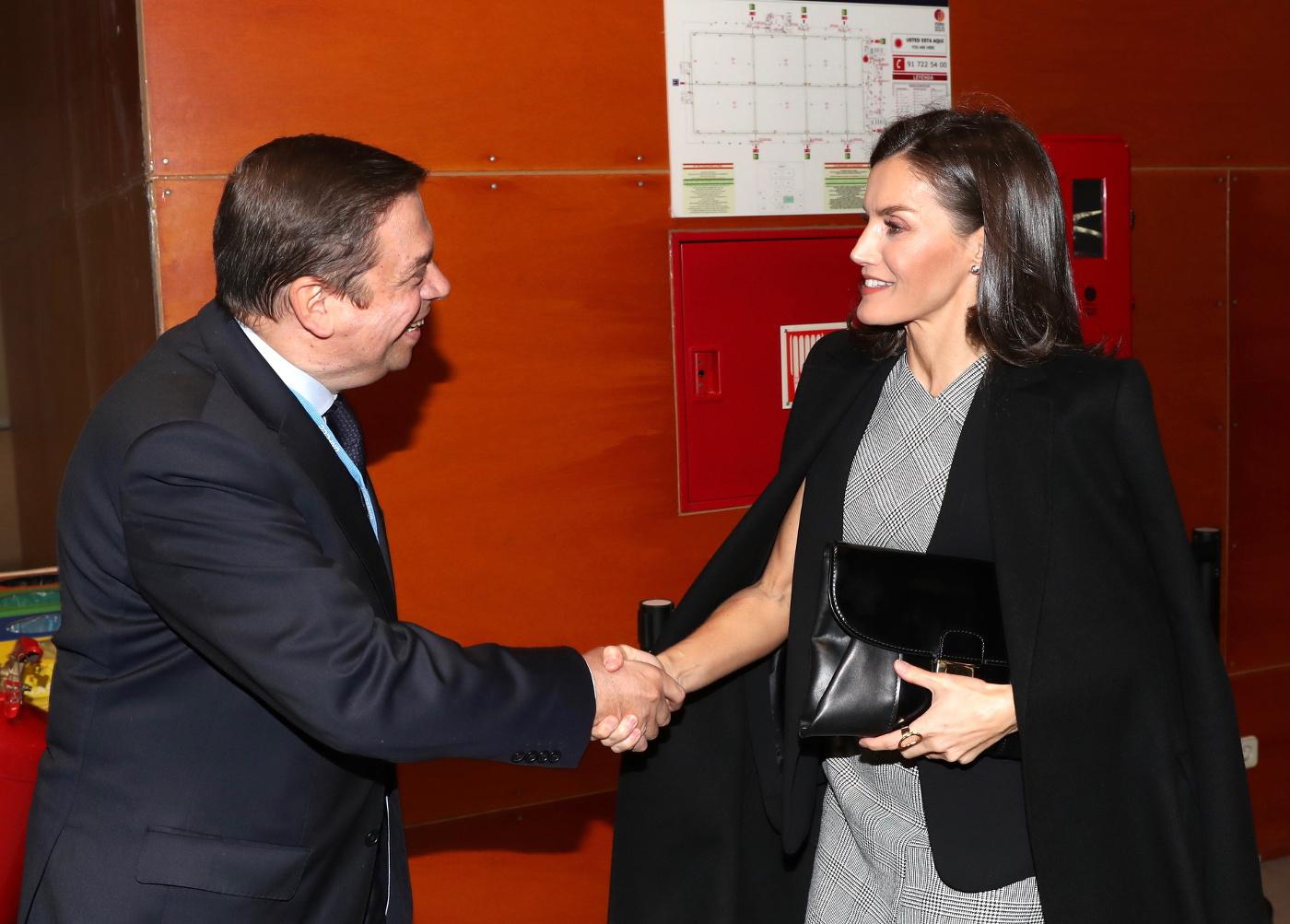 La reina Letizia en la Cumbre del Clima recupera su capa de Zara y vestido de Hugo Boss