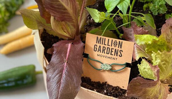El hermano de Elon Musk quiere llenar el mundo de jardines para combatir la crisis alimentaria