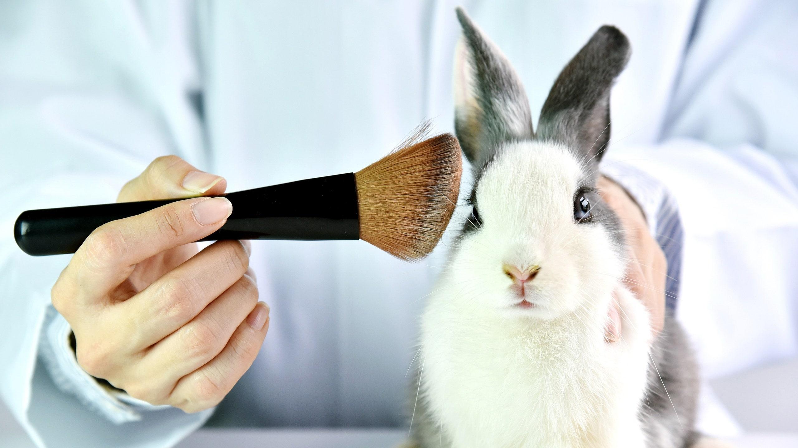 ¿Cómo saber si tus marcas favoritas de cosméticos son animal cruelty-free?