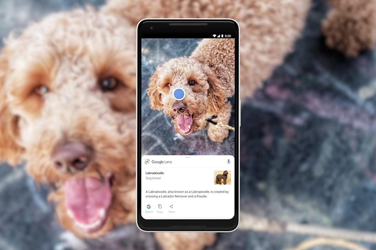 Google Lens cambia su algoritmo para mejorar las búsquedas visuales