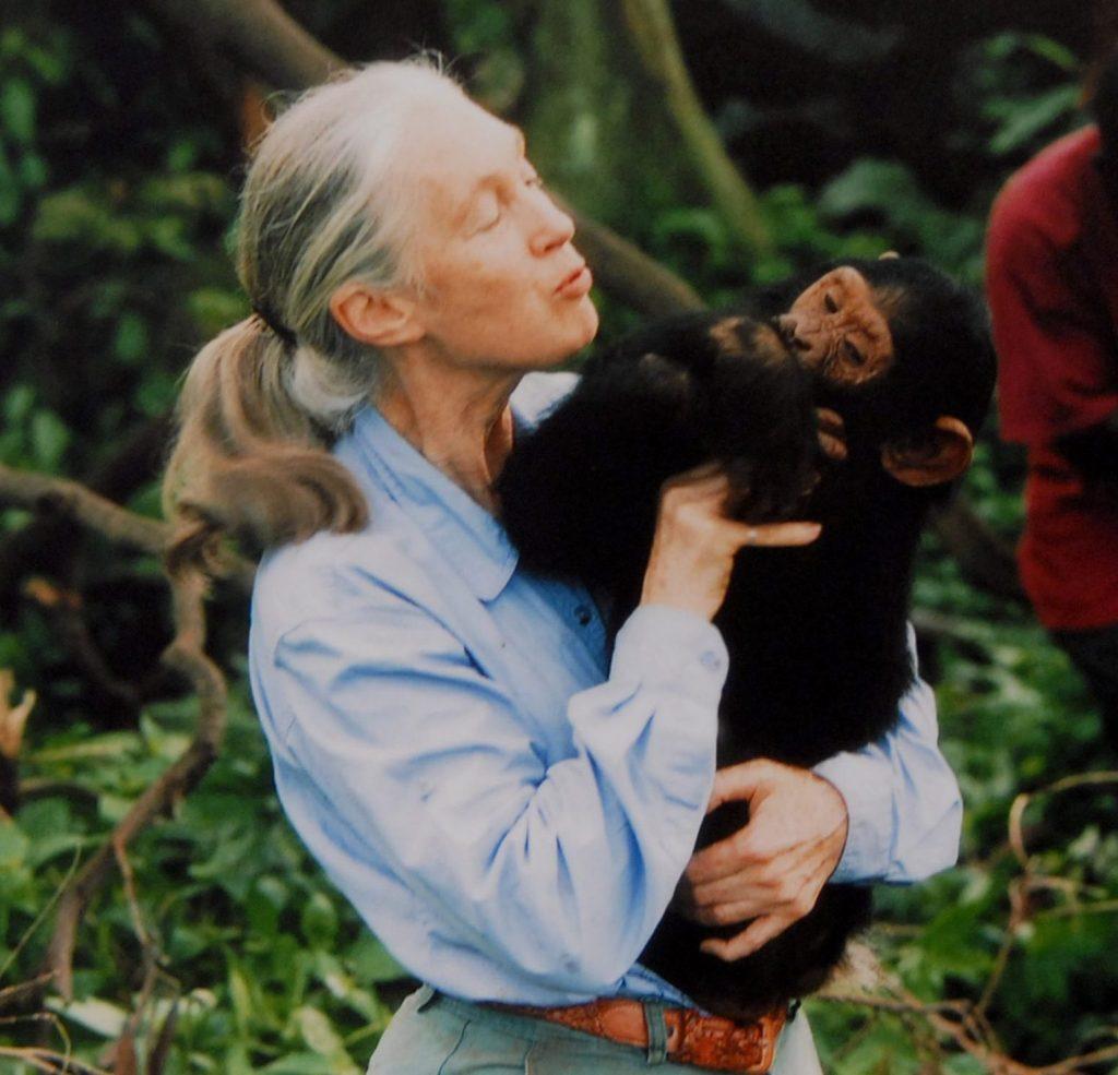 Jane Goodall Essential Oils