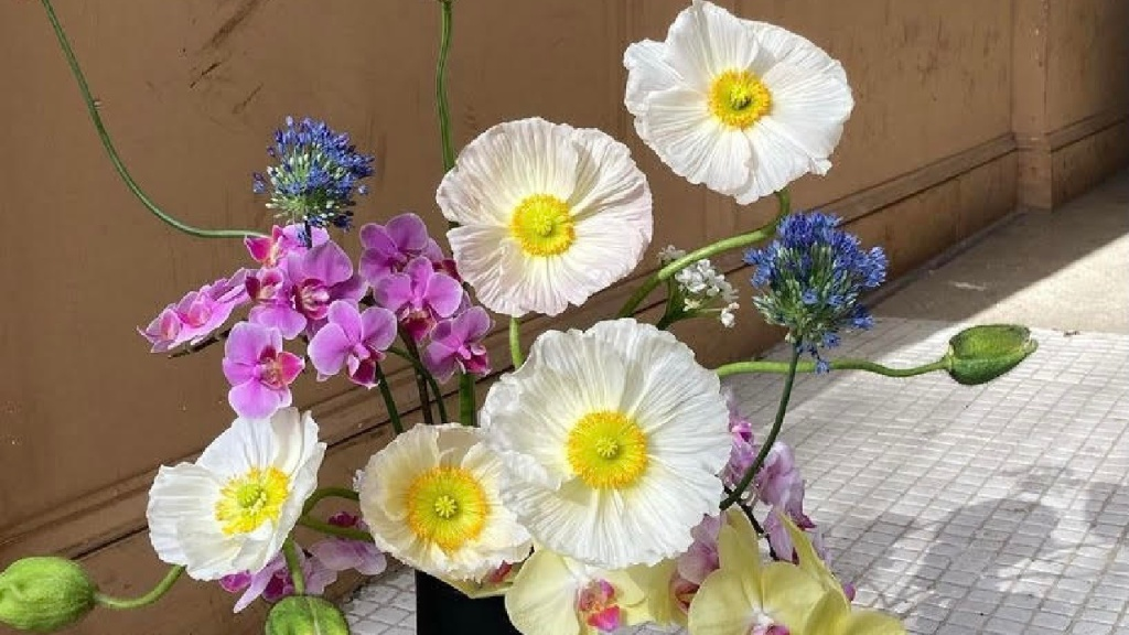 Love Me Not Florals