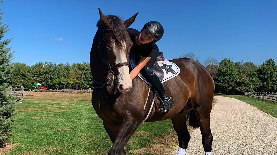 Bella Hadid S Horse Is Chic Grazia
